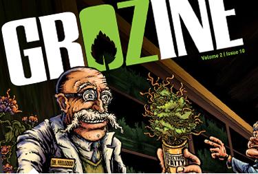 Grozine Magazine