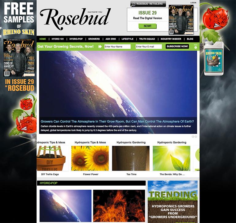 Rosebud Magazine